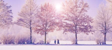 winter scene of sun filtering through snow capped trees, blue skies, and a couple walking