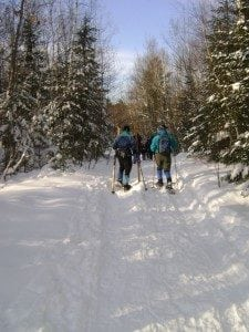 view of two cross country skiiers along a snow cover trail in the woods