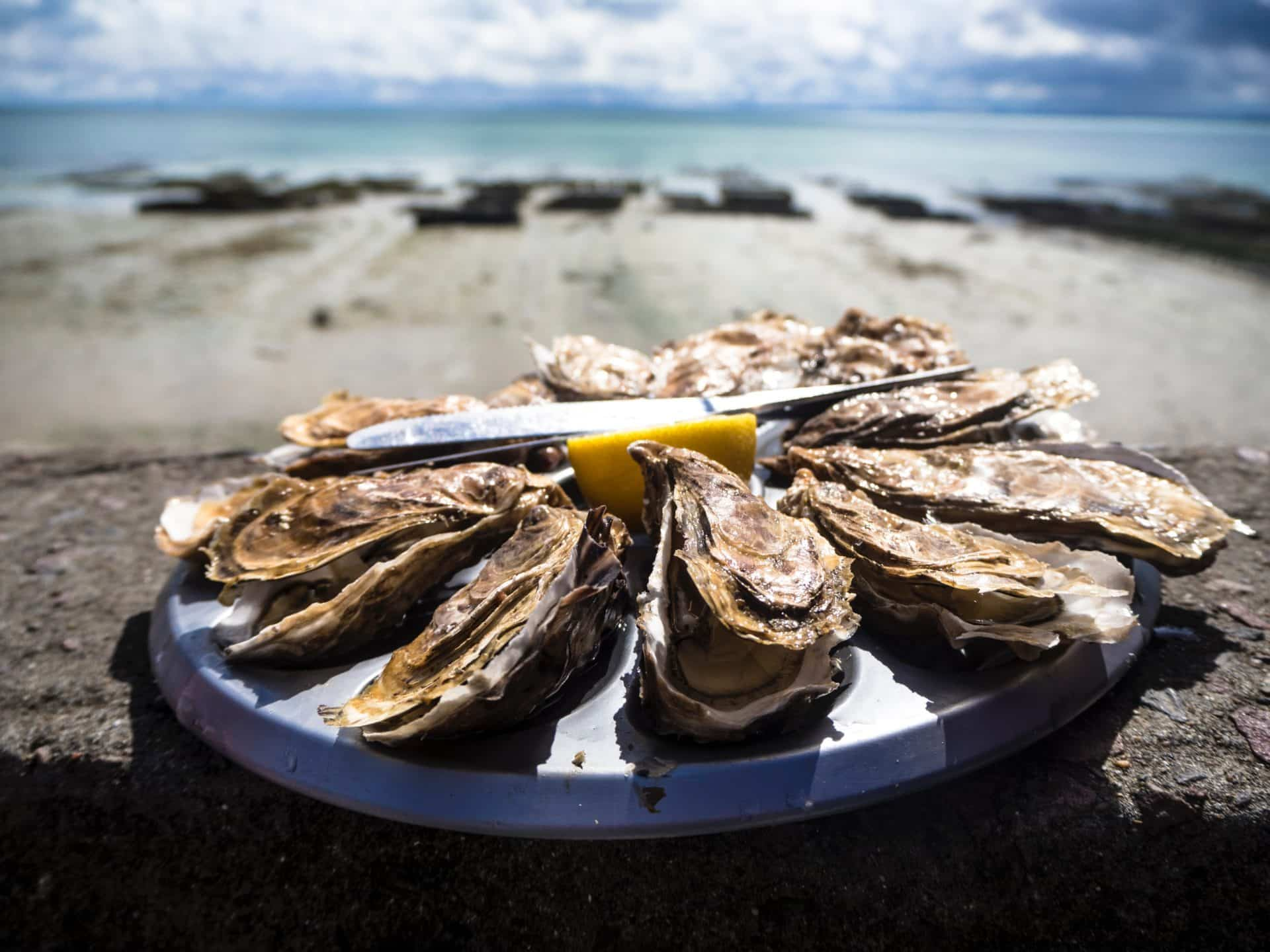 oysters on a plate with lemon and the beach and ocean in the background
