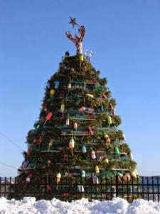 image of Rockland lobster tree